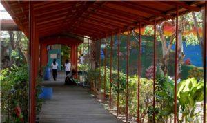 medio ambiente, escuelas, Nicaragua, cooperación genuina