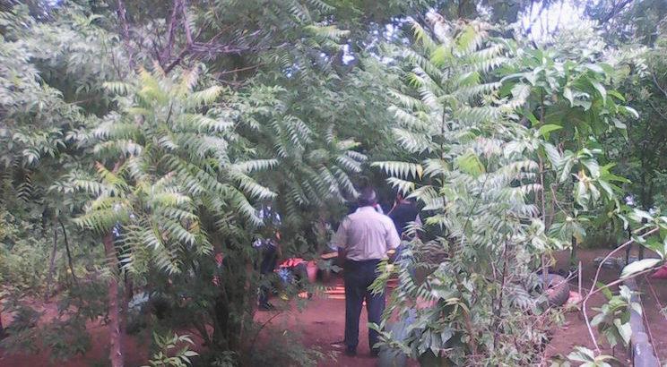 Cooperación genuina, bosque, medio ambiente, Nicaragua