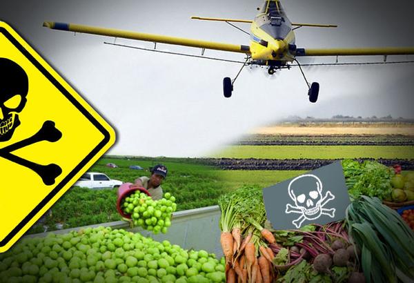 se-recuperan-archivos-valiosos-que-prueban-el-impacto-de-los-pesticidas-en-la-salud